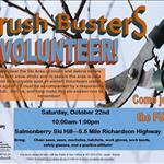 Brush Busters 2016 Flyer.jpg